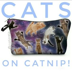 Handbags - $7 ADD ON! Flying Cats Padded Makeup Bag